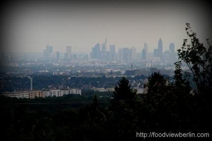 Frankfurt on Main seen from Taunus