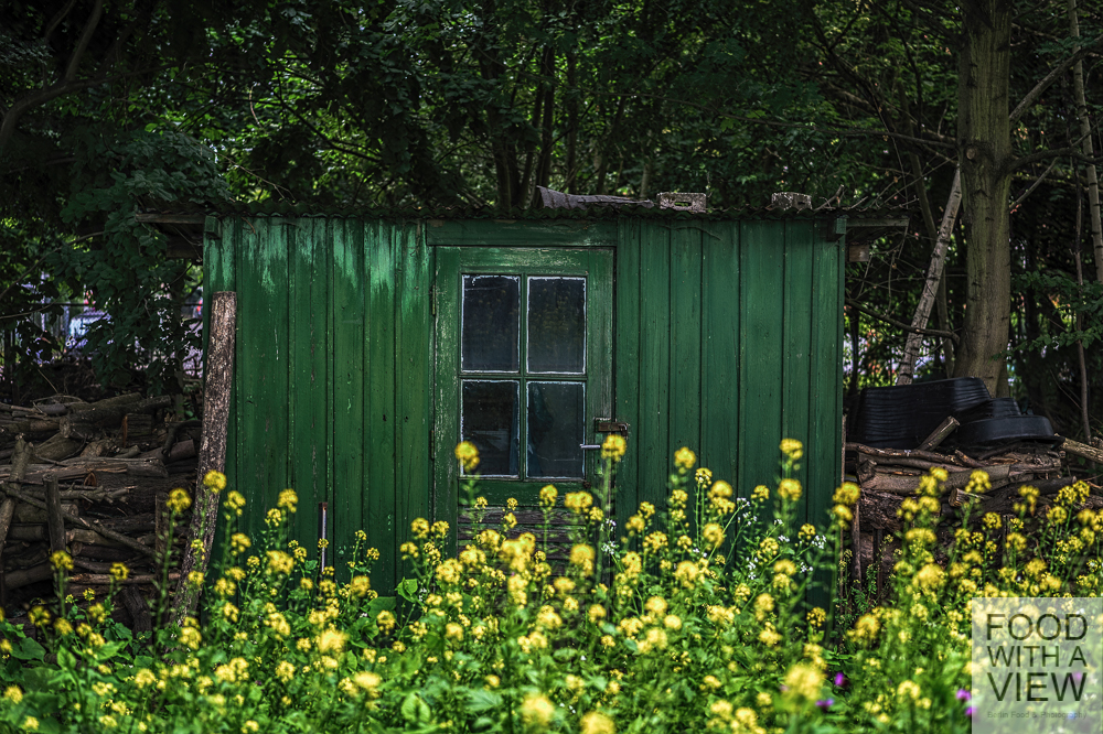 shed 02.07.2014-1