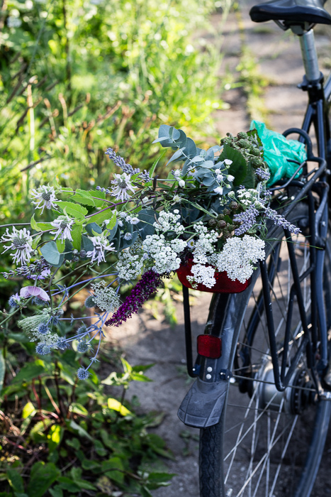 garden, flowers, bicycle