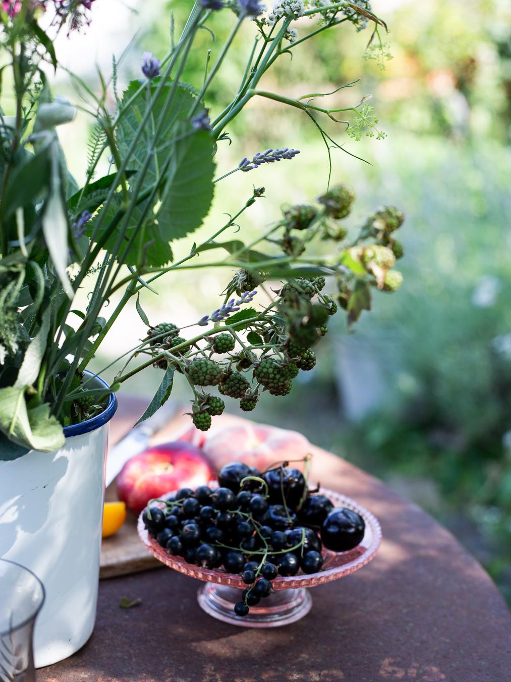 summer, breakfast, garden, cherries