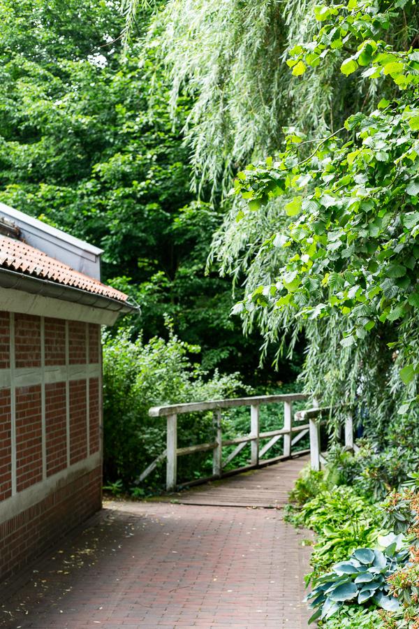 Schlossgarten, Oldenburg, park, landscape, garden